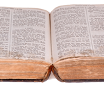 Bible-Discipleship-Training